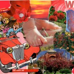 Collage in rood