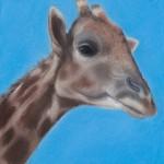 Giraffe pastel