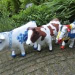 koeien beschilderen